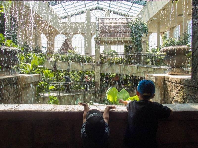 Waterfall in the Niagara Falls Bird Kingdom Aviary during winter in Niagara Falls with kids