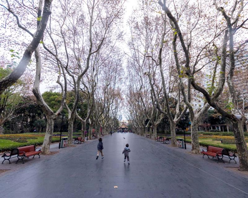 Boys run between the trees of Xiangyang Park on a Shanghai China food tour
