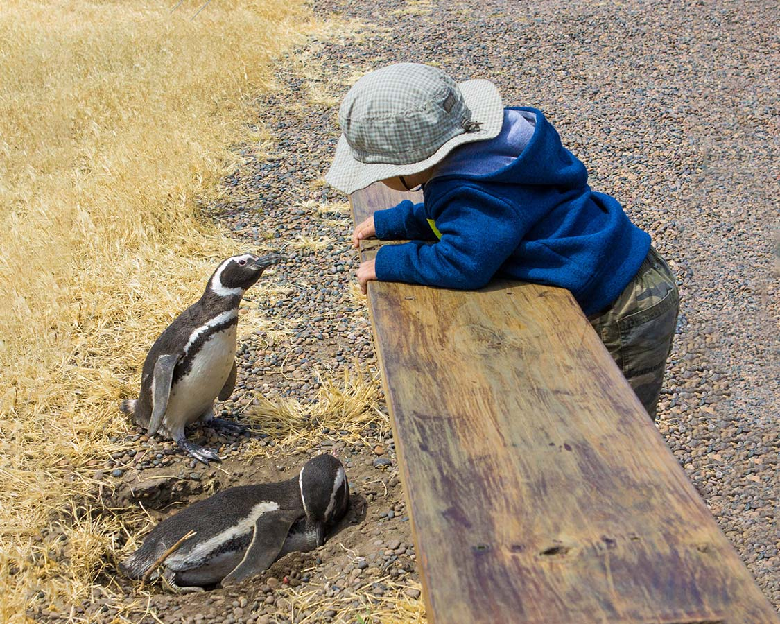 10 Of The Best Family-Friendly Wildlife Experiences In The World