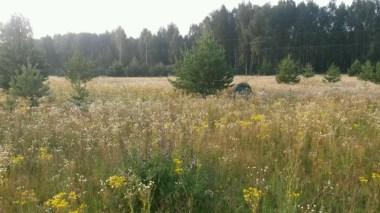 Zelten auf wilden Wiesen in Russland.