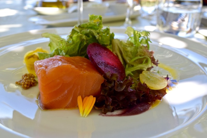 Salmon starter at Lapostolle, Colchagua Valley, Chile