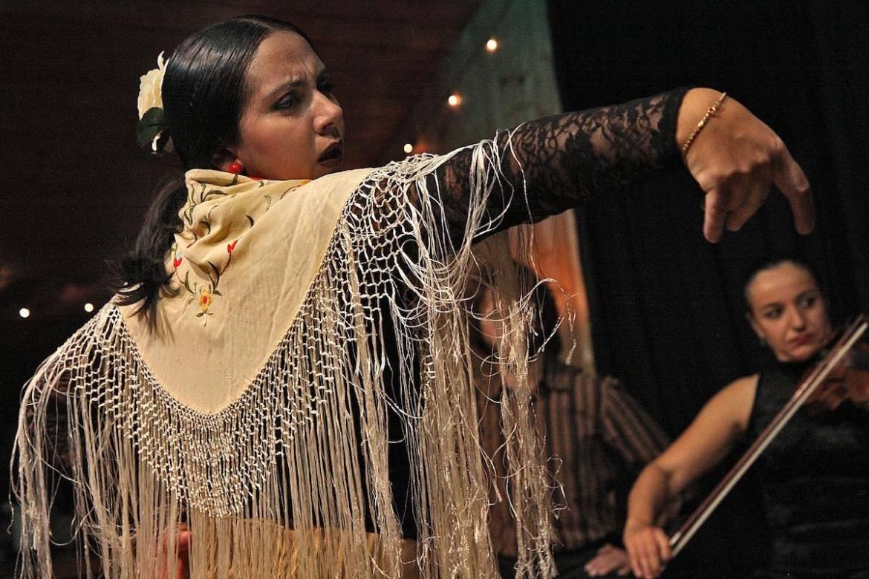Flamenco Spain
