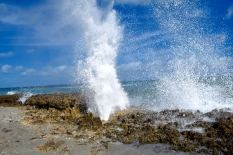 Blowing Rocks Preserve, Martin County