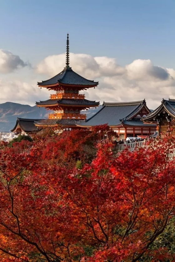 View of Kiyomizu-dera temple in Kyoto with autumn foliage in the foreground.