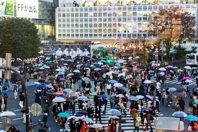 View of people with umbrellas at Shibuya crossing on a rainy day.