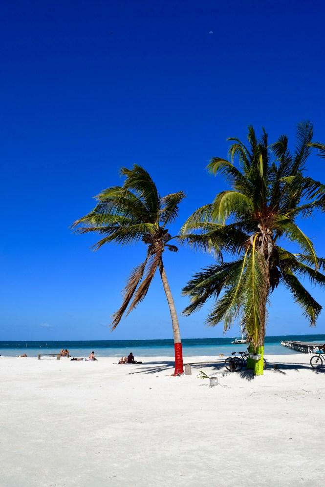 Belizean Beach