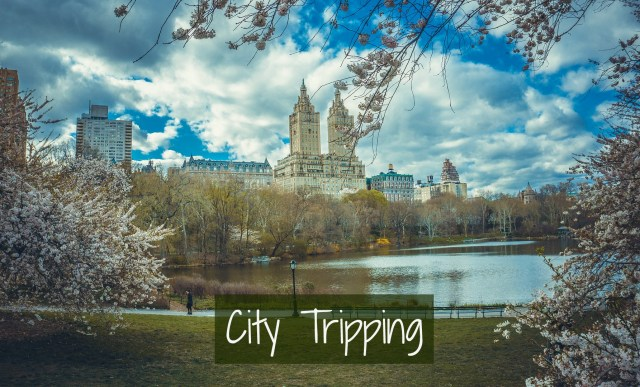 new-york-city-tripping66-pixabay