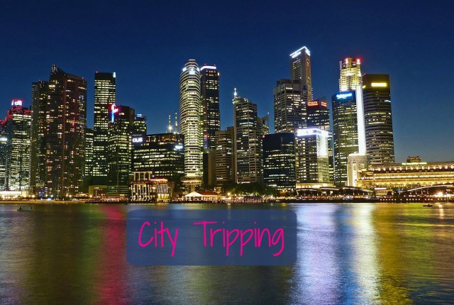 Singapore City Tripping 73