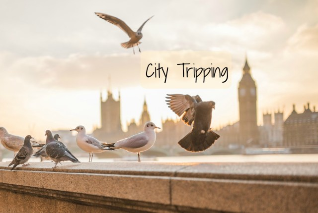 City Tripping London