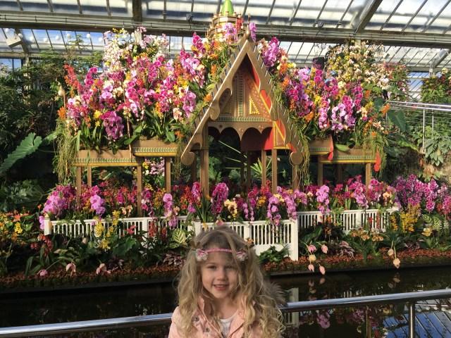 Kew Gardens Orchid Festival