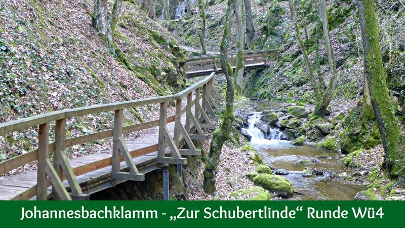 Johannesbachklamm Würflach Zur Schubertlinde Wü4 Wanderung Wandern Natur Klamm Wasser Wald Aussicht Berimoasterkreuz