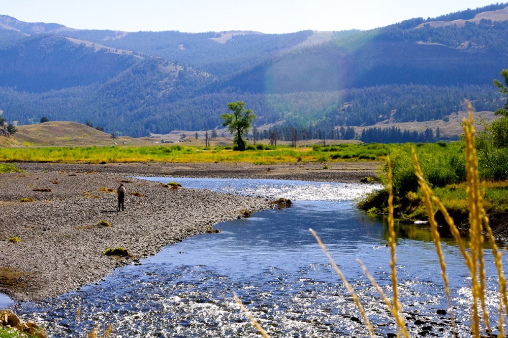 Fishing in Yellowstone National Park