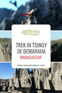 Guide to Tsingy de Bemaraha National Park in Madagascar