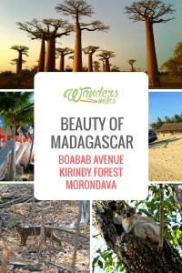 Image of Beauty of Madagascar guide