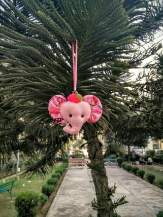 pink ellie hanging