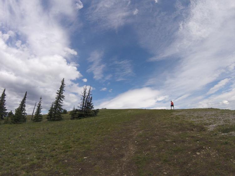An image of the Prairie Mountain hiking trail in Kananaskis, Alberta