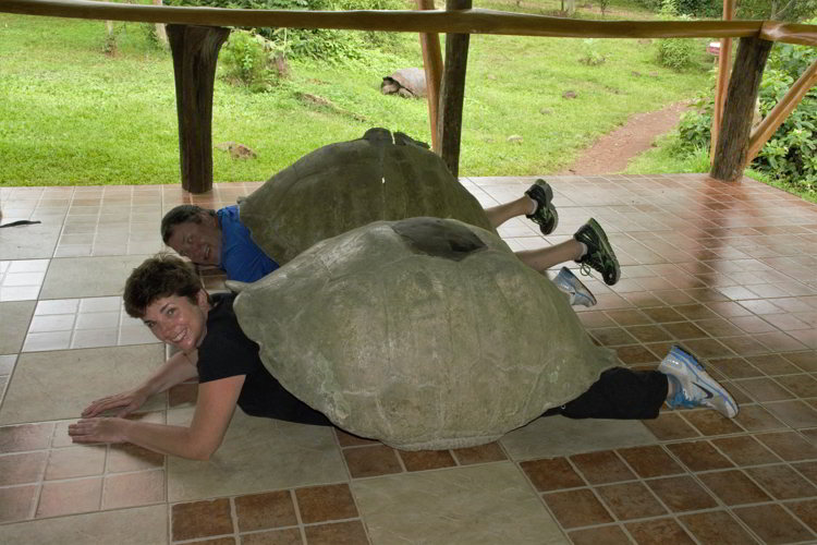 An image of two people inside giant tortoise shells in the Galapagos Islands