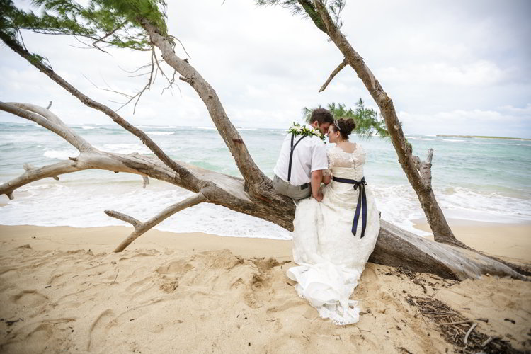 An image of a bride and groom sitting on a tree branch on the beach in Hawaii
