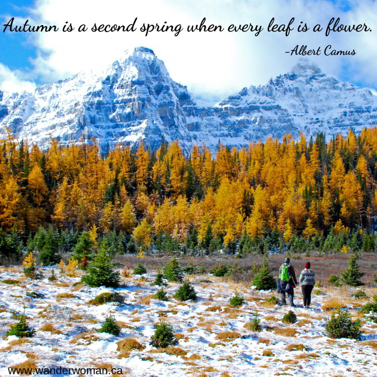 An image of two people looking at the scenery in the Larch Valley in autumn in Banff national Park Canada - meaningful quotes about nature - Autumn is a second spring when every leaf is a flower - Albert Camus