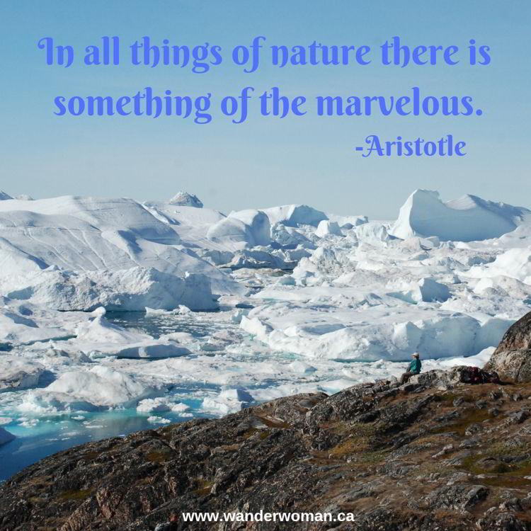An image of Ilulissat Icefjord in Greenland - meaningful quotes about nature - In all things of nature is there something of the marvelous - Aristotle