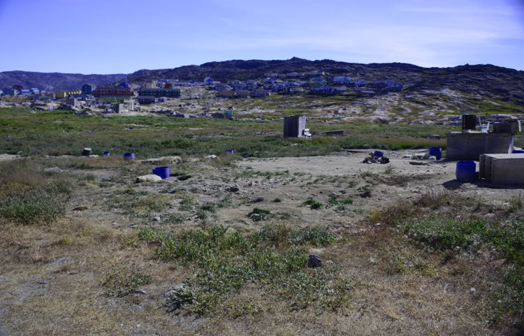 An image of the sled dog area outside the town of Ilulissat Greenland