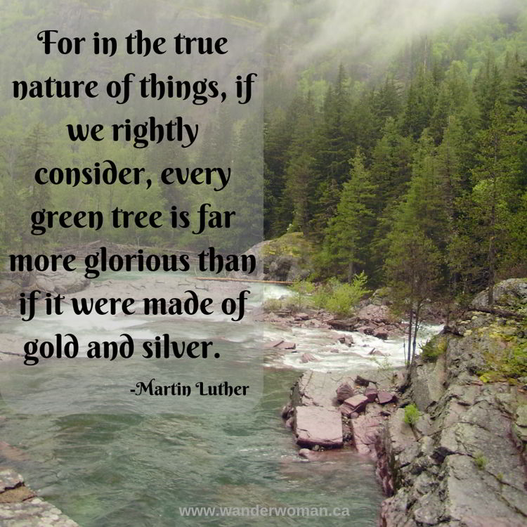 An image of a beautiful mountain river in Glacier National Park, Montana, USA. Meaningful quotes about nature - Martin Luther