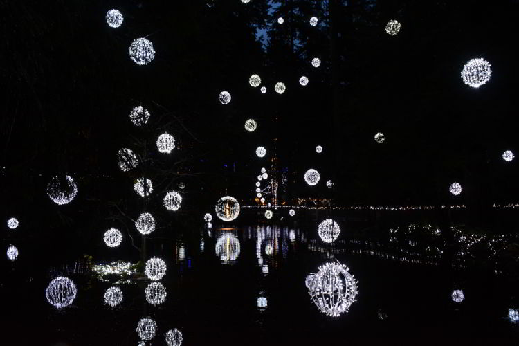 An image of white lights hanging over a lake and reflecting in the water below - Vancouver Christmas Lights