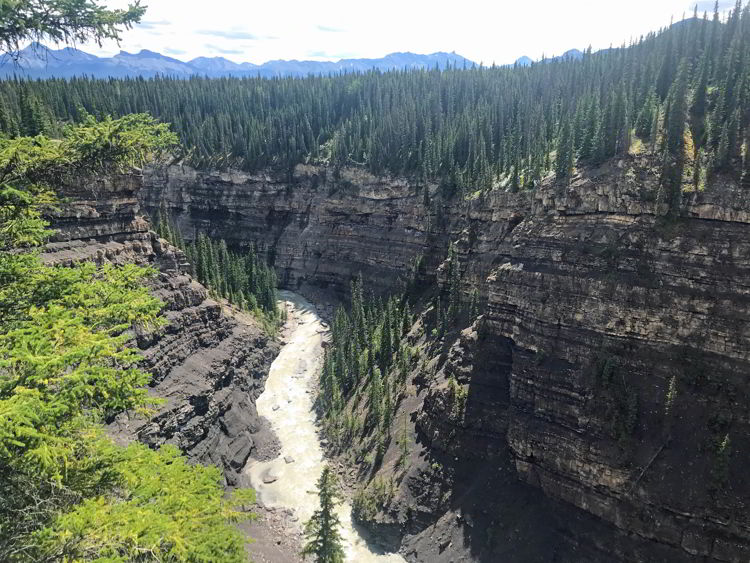 An image of the Bighorn Gorge in David Thompson Country, Alberta - Crescent Falls Hike.
