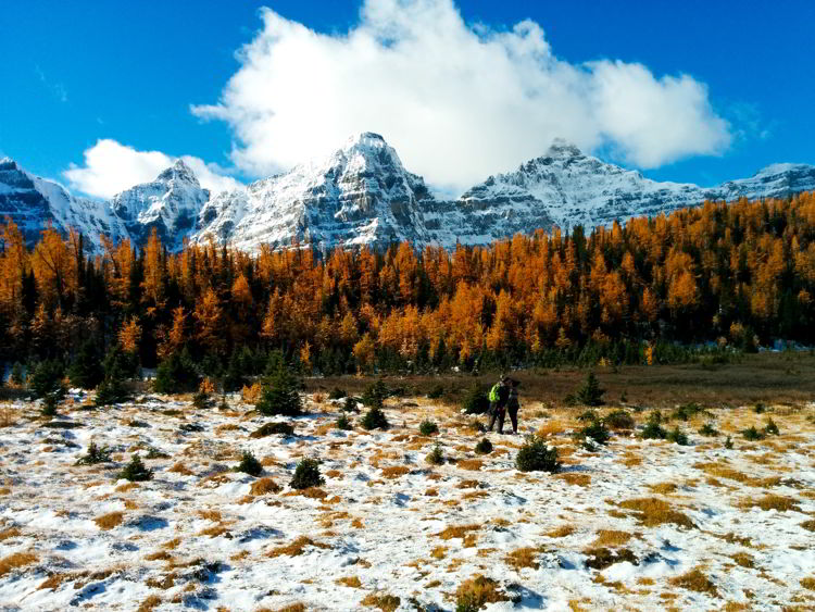 An image of a couple kissing in the Valley of the Ten Peaks along the Larch Valley hike in Banff National Park, Alberta, Canada.