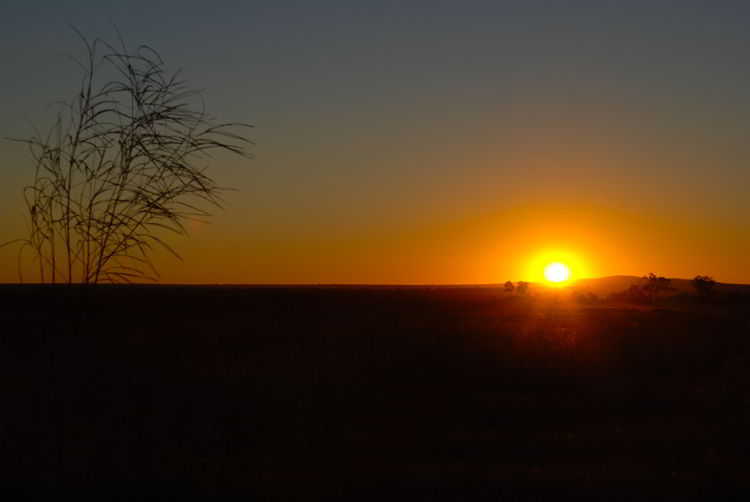 An image of the sunset in the Queensland outback in Australia.
