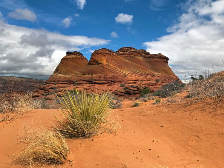 An image of beautiful rock formations in Coyote Buttes North Wilderness Area, Utah, USA.