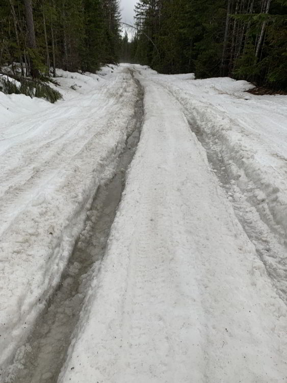 An image of the road leading to Halfway Hot Springs in early spring.