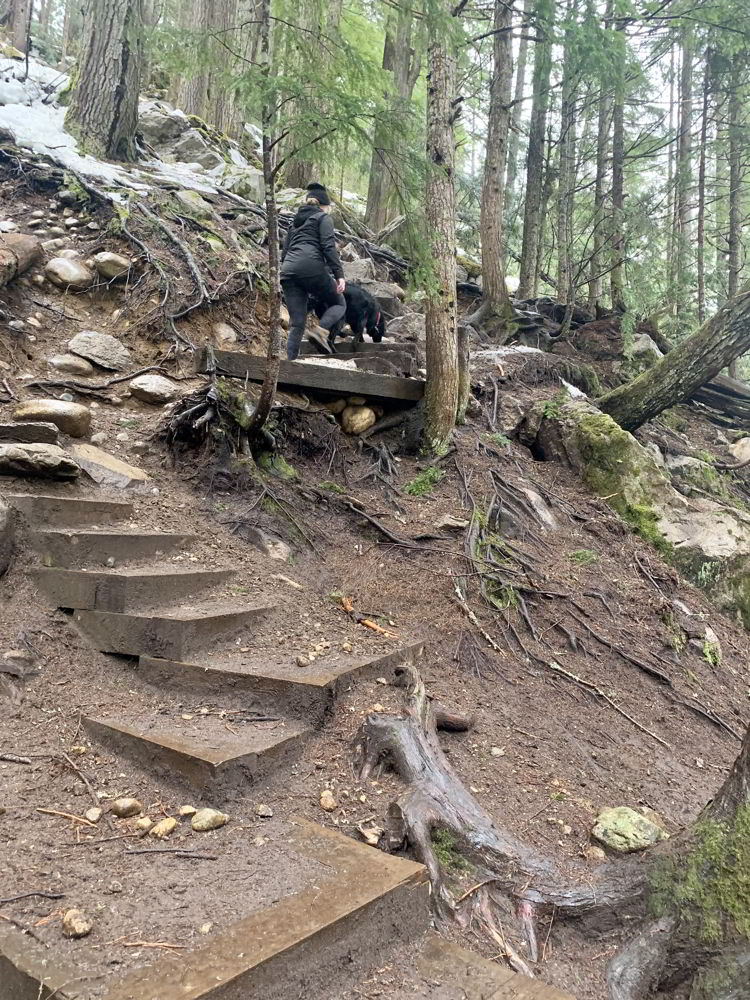 An image of stairs on the trail that leads to Halfway Hot Springs in British Columbia, Canada.