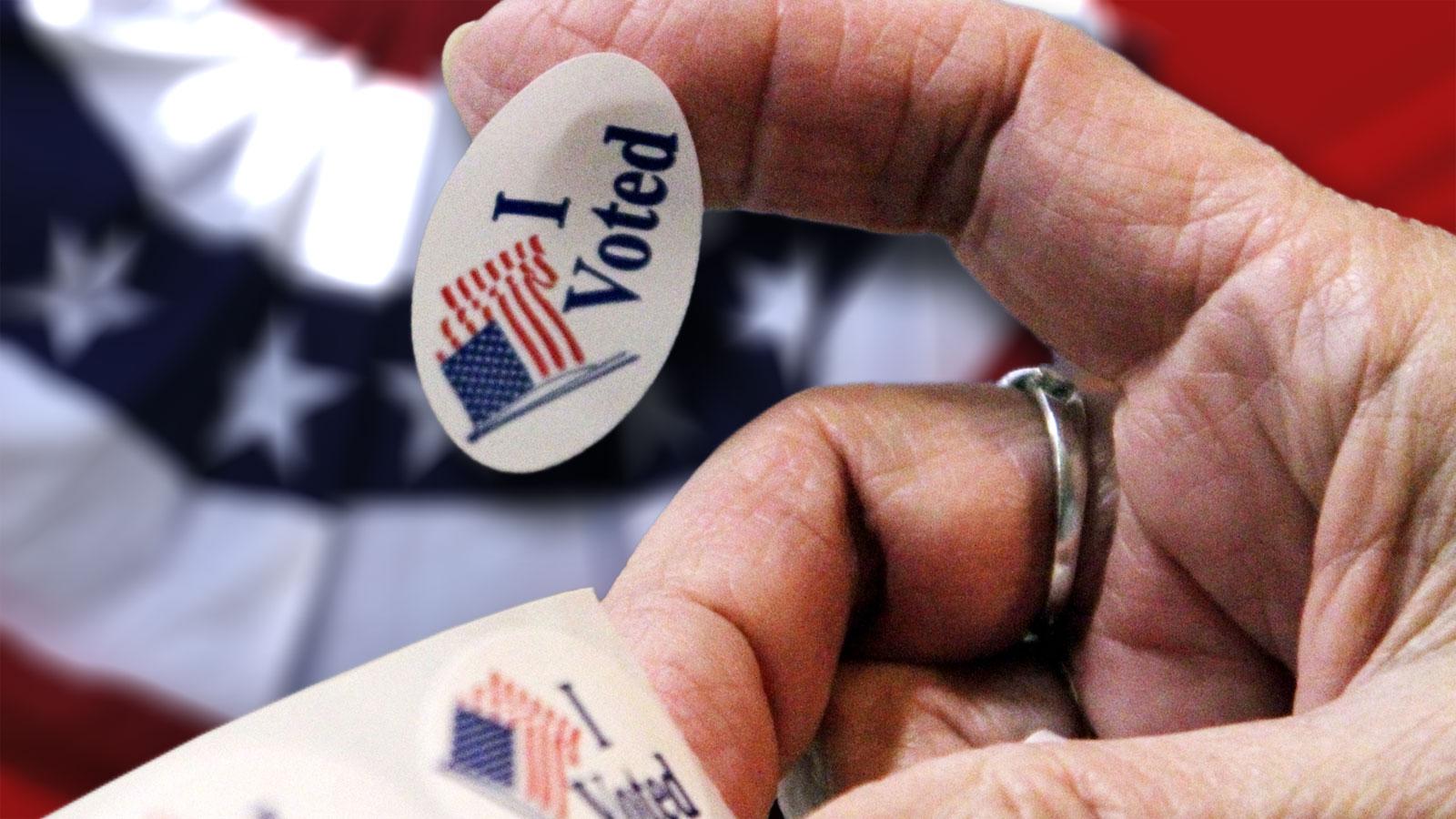 I voted sticker_225931