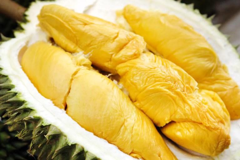 Merepeknya, Lihat Benda Jijik Dicipta Daripada Buah Durian