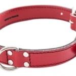 honden halsband gestikt leer rood