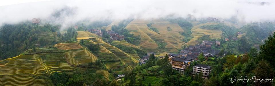 The Longsheng Rice Terraces