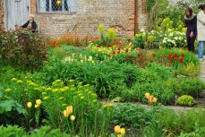 the Cottage Garden