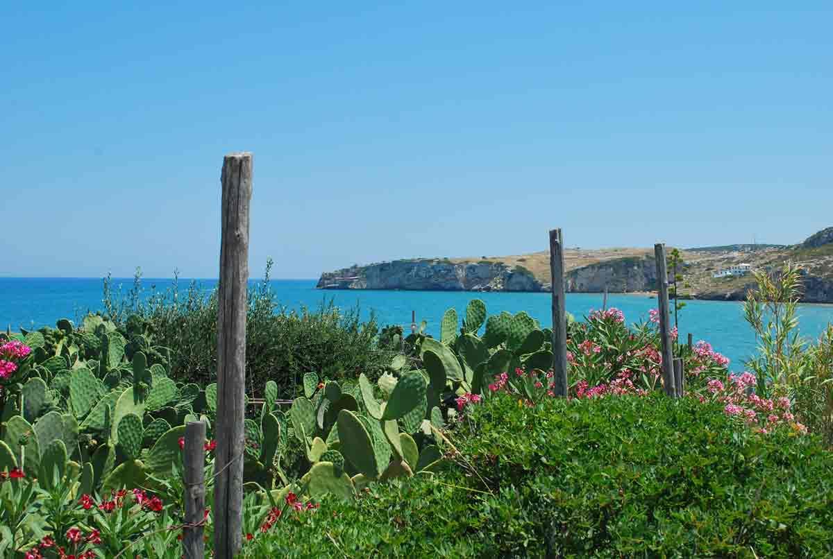 Inspiratie nodig voor een roadtrip in Puglia?