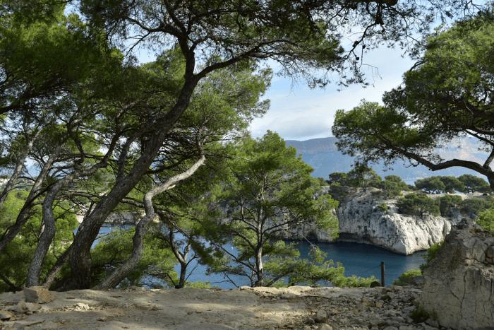 Wandelen in uniek natuurgebied Les Calanques