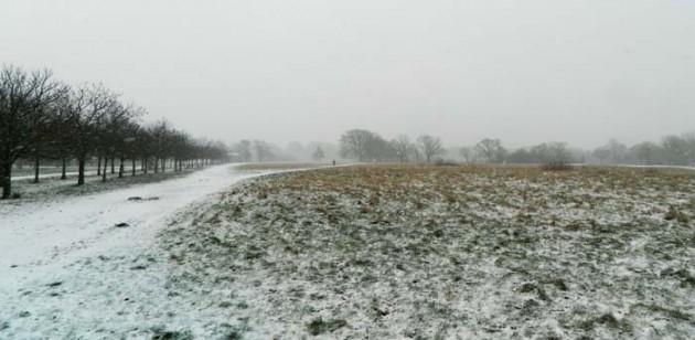 Plain snow
