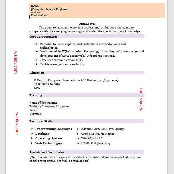 Top 10 Fresher Resume Format In MS Word