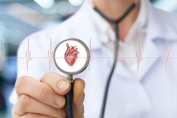 cardiologist resume