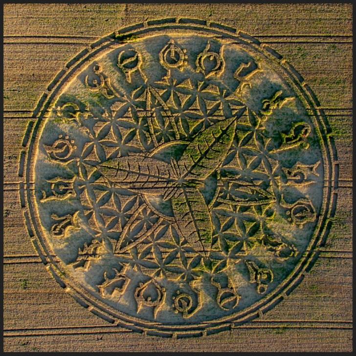 ansty crop circle emboss