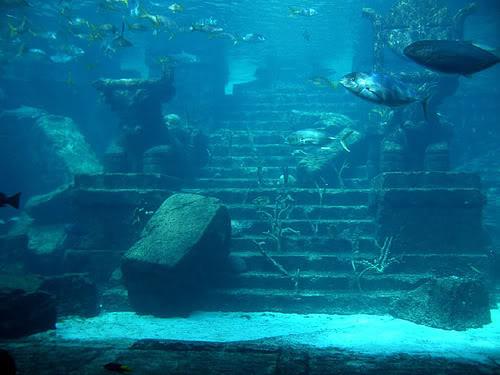 atlantis onderwater
