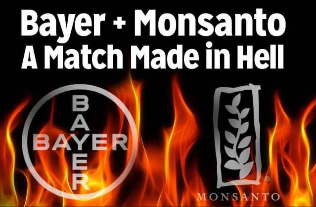 bayer-monsanto-match-made-in-hell