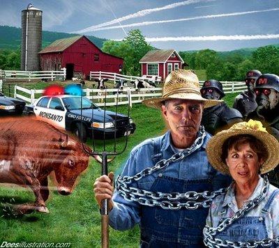 Complottheorieën op het boerenbedrijf.. Ontkennen van feitelijke situaties..? De feiten zijn toch écht de feiten. Een getrokken politiepistool is niet te ontkennen, toch?
