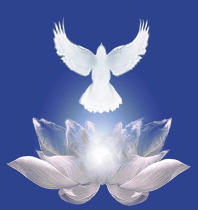 Het christus-bewustzijn als vredesduif