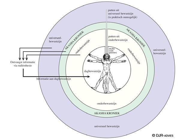 dineke universeel bewustzijn