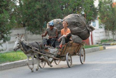 donkey romenia